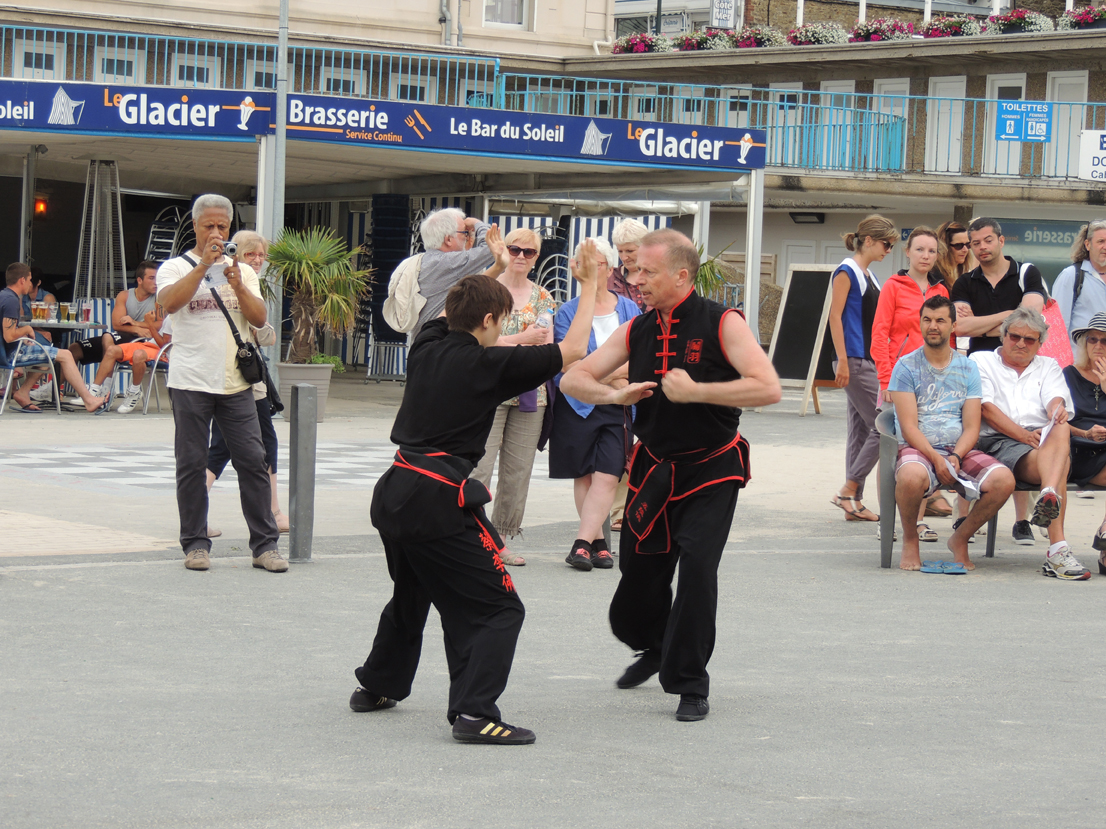 Kung fu traditionnel - Université d'Eté FAEMC 2015